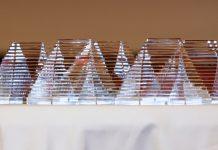Jedes Jahr wird der BIG AWARD verliehen, die Auszeichnung für kreative Stellenanzeigen im Deutschen Ärzteblatt.