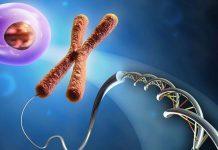 Pharmariese Janssen engagiert sich für Disease Interception.