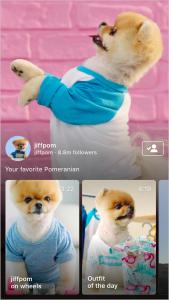 IGTV wird der Instagram-Trend für 2019 sein