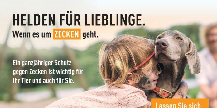 Gut informierte Tierhalter werden zu Helden für ihre tierischen Lieblinge. © MSD Tiergesundheit