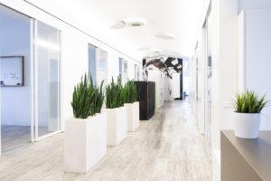 Georgios Manolidis legt Wert auf eine offene Arbeitskultur, die sich in den Räumlichkeiten der Ludwigshafener Digitalagentur spiegelt. © Anne Mück