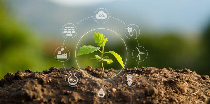 Um umweltfreundliche Verhaltensweisen und Abläufe im Unternehmen zu fördern, nutzt Boehringer Ingelheim die nachhaltige Gestaltung von Konferenzen und Meetings mit dem Konzept: Green Meetings. © piyaset/ istock